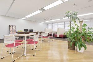 オフィスに観葉植物